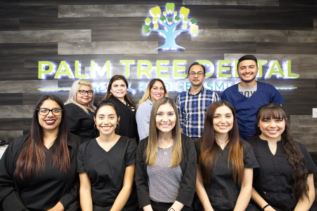 Palm Tree Dental Ingleside, TX Team